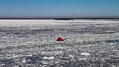 0321 - Finland, Approaching Helsinki, Little Red Tugboat (Barry Mangham) Tags: red sea cold ice finland boat helsinki europe loneliness transport freezing freeze vehicle tugboat lonely tug stranded atsea vastness marooned