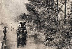 Crawford and Co. coach crossing the Snowy Creek, circa 1900 (Explore #128) (Aussie~mobs) Tags: australiapost maildelivery mail riverbed horsedrawnwagon wagon vintage 138 aussiemobs