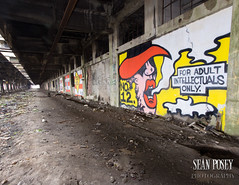 Adult Intellectuals Only (Sean  Posey) Tags: abandoned graffiti murals buffalocentralterminal rustbelt trashman buffalonewyork spainrodriguez