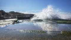 Splash (LSydney) Tags: splash wave water reflection turimetta