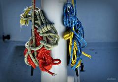 Escuela de vela (Franco DAlbao) Tags: francodalbao dalbao fuji nudos knots mstil mast escuela school navegacin sailing bouzas vigo clubnatico estachas cabos strokes aprendizaje learning mar sea barco boat