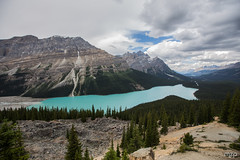 Peyto Lake (mzagerp) Tags: road trip usa canada rockies rocheuses etats unis mzagerp banff national park lake louise moraine lac emerald meraude plain six glaciers columbia icefield glacier
