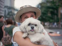 Happiest Look (abnercestari) Tags: 645 kodak kodakportra kodakportra400 mamiya mamiya645 mamiya645pro mediumformat portra portra400 sopaulo mediumformatphotography paulista pet dog love 80mm f19 80mmf19