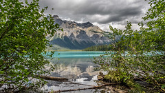 """""""Nature is not a place to visit. It is home"""" (Josiane . On&Off) Tags: emerald emeraldlake yohonationalpark bc canada clouds landscape lake water trees d750 nikon nature outdoor rockymountain reflection rocks leafs"""