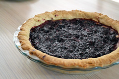 Blackberry Custard Pie (one.juniper) Tags: whipcream pie fruit blackberries freshly picked fresh food photography foodie crust custard recipe homemade countryliving country cooking baking foodstaging baker kitchen staging styled foodstyling sauce preserves plated ontario canada blackberry berry dessert