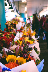 Views From the Civic VIII (ShannonElisabeth) Tags: nikon nikond5500 dslr raw rawimage nikonphotography teamnikon seattle washington explorewashington exploremore roadtrip pike pikes pikeplace pikeplacemarket market flower flowers colors