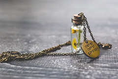 Brass pendant with dry flowers in tiny bottle (Arina Borevich) Tags: diy accessory background backgrounds black bokeh bottle chain color craft dark dry flora flower flowers glass handmade herbarium jewelry pendant plant texture textured wood wooden