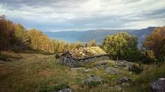 Bjrkestlen (stubinde) Tags: bjrkestlen ortnevik sognogfjordane sognefjorden sogn hegrefjell experiaz2 autumn norway cottage