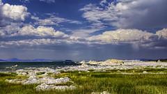 Mono Lake, CA (punahou77) Tags: monolake easternsierra sierras sky stevejordan landscape lake california clouds grass leevining punahou77
