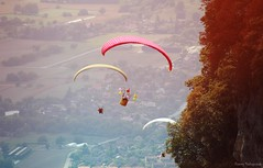(fanny.czk) Tags: paragliding sky mountains alps frenchalps coupeicare acro paragliders love nature sport dguisements
