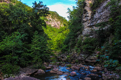 Tallulah Gorge State Park. August 2016 (tarell_sallie) Tags: georgia tallulah tallulahgorge tallulahfalls tallulahgorgestatepark northgeorgia northga wandernorthga wandernorthgeorgia state north unitedstates america usa unitedstatesofamerica scenery sceneic landscape artistic canon canont3i august 2016 travel travelphotography mountains mountain hills trees river creek water freshwater rocks stone green grass plants nature wildlife sky skies clouds creative beautiful gorgeous