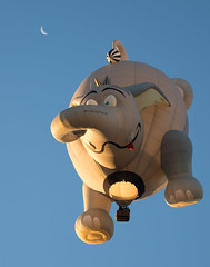 ...When Elephants Fly to the Moon (brian-caldwell.artistwebsites.com) Tags: adirondackballoonfestival adirondack adk adk2016 hotairballoon elephant peanut queensbury ny newyork iheartny hotairballoons moon bluesky