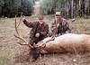 New Mexico Elk Hunt 50