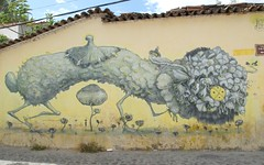 Plant or Animal Mexico (Ilhuicamina) Tags: house art mexico graffiti mural paintings oaxaca walls creatures