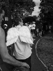 Wings (Julie Byrnes) Tags: blackandwhite bw angel wings noiretblanc candid sydney feathers streetphotography australia bizarre streetimages juliebyrnes