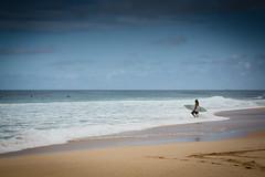 BW7A0126.jpg (zabomysicka) Tags: hawaii oahu surfing northshore pipeline ehukaibeachpark