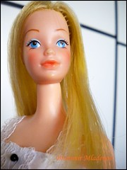 70's Beauty (Brani's fashion dolls) Tags: european barbie exclusive standart