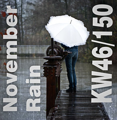 November rain  KW46/150  Explored #483 (Swissrock) Tags: icon novemberrain onceeins kw46150