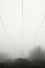 Power Line Fog (frntprchprss) Tags: morning blackandwhite fog utility powerline blackwhitephotos jamesgehrt