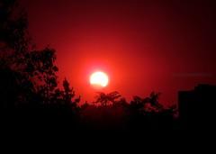 ECLIPSE DE SOL (Pablo C.M || BANCOIMAGENES.CL) Tags: chile city santiago sun sol eclipse ciudad astro luna providencia eclipsedesol