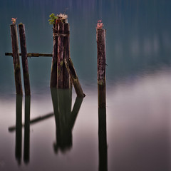 Old Pilings (Alan Drake) Tags: ocean wood blue sea nature water digital square landscape dock nikon logs foliage d7000