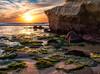 Light Show Sunset Cliffs (mojo2u) Tags: ocean california sunset sandiego oceanbeach seagrass sunsetcliffs pointloma nikond700 cormorantrock nikon28300mm