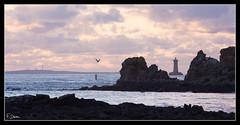 Le phare du Four au coucher du soleil (dantecf) Tags: sea mer lighthouse brittany bretagne phare finistre ouessant