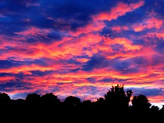 Pink Cotton Candy Sky (moonjazz) Tags: pink blue sunset sky color weather clouds photography pastel