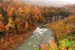 Give me a break II (MarcusDC) Tags: autumn water fog river russell fallcolor kentucky ky fork appalachia breaksinterstatepark