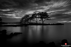 Ominous Sky (Thncher Photography) Tags: ocean longexposure trees sunset bw hawaii blackwhite nikon silhouettes maui le fullframe fx d800 makena nikond800 nikkor1635mmf4lens