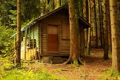 Cabane forestire (jd.echenard) Tags: allxpressus