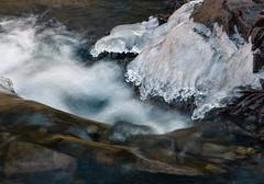 Smooth As Ice (Boreal Bird) Tags: ice water amitycreek smoothasice