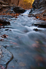 Feel the Moving (Mostafa Karimi) Tags: autumn river iran nd     kalatehahan nd nd8zeta67mm