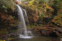 Grotto Falls Tenn. (Larry Frogge Photography) Tags: color fall nature water waterfall tennessee hike falls smokymountain grottofalls smnp larryfrogge