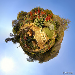 WSNBG Stereographic (TuKiYA) Tags: camera panorama digital tv aloe nikon martin d70 fisheye photograph polar dslr hdr vfx supervisor hdri hyperbolic stereographic 105mmf28g heigan wsnbg