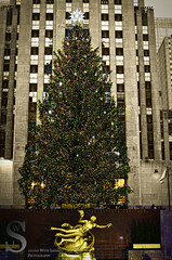 Festive NY   Rockerfeller Center Tree- (Singing With Light) Tags: city nyc november ny festive photography pentax manhattan 2012 k5 jjp singingwithlight 2012jjpk5nynycnovembersingingwithlightcityfestivemanhattanpentaxphotography
