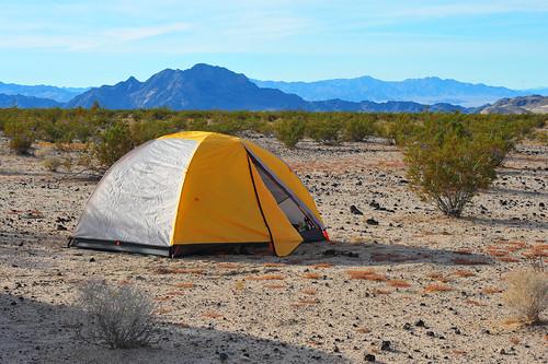 plants mountains rock desert tent national mojave preserve shrubs