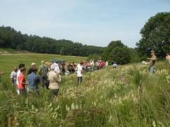 Cranberry Workshop (Xerces Society) Tags: field ma tour cranberry slider habitat northest pollinatorconservation