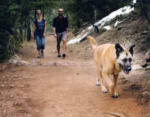 Photo - Hikers walking their dog