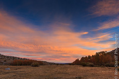 Eastern Sierra Sunrise (Ben Sheriff Photography) Tags: morning fall sunrise landscape meadow easternsierras laurelcanyon monocounty landcapephotography bensheriffphotography