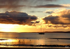 Mid-December Sunset At Scapa (orquil) Tags: uk winter sunset seascape beach birds silhouette golden bay scotland seaside orkney december yacht shoreline cloudscape scapa scapaflow orcades