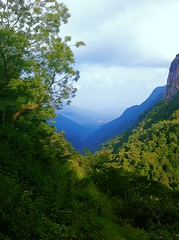 Mountains,Nilgiri (Sishirps) Tags: toucan kethi uploaded:by=flickrmobile flickriosapp:filter=toucan