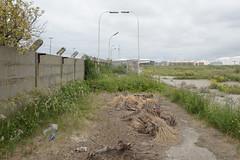 Antwerpen (dangpollard) Tags: belgium oil refinery antwerpen manmadelandscape manalteredlandscape scorchedland