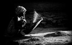 Cleaning Rice. (Padmanabhan Rangarajan) Tags: araku village rural india cleaning rice fields work labour valley vizag