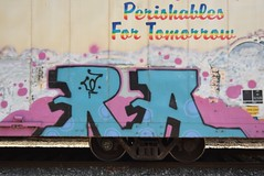 RA (TheGraffitiHunters) Tags: graffiti graff spray paint street art colorful freight train tracks benching benched ra reefer