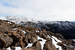 20160807-09-From lookout across to Tarn Shelf and Rodway Range (Roger T Wong) Tags: australia mtfield mtfieldnationalpark np nationalpark rodwayrange sel1635z sony1635 sonya7ii sonyalpha7ii sonyfe1635mmf4zaosscarlzeissvariotessart sonyilce7m2 tarnshelf tasmania bushwalk hike lookout outdoors snow tramp trek walk winter