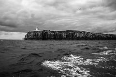 Farne Lighthouse (marktmcn) Tags: inner farne lighthouse island islands cliff top face northumberland coast north sea spray waves clouds grey sky blackandwhite monochrome d610 nikkor 28300mm