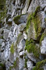 The wall (Llpez) Tags: bosque encantado puente muro verde musgo monumento pontevedra galicia ras baixas aldn
