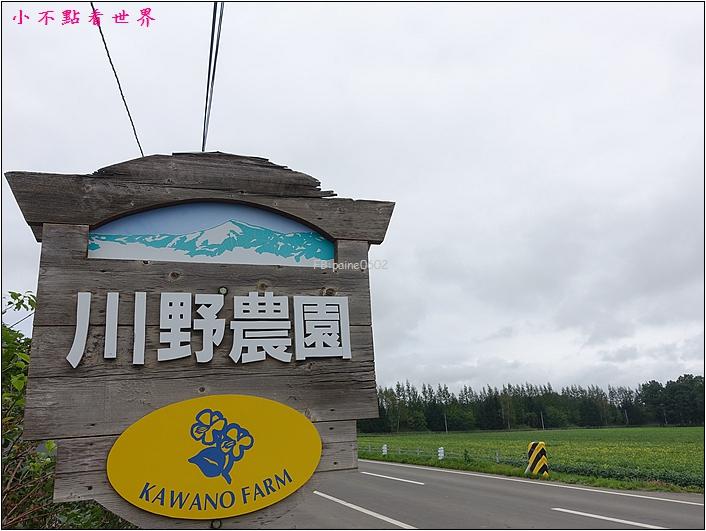 川野農場 DIY採玉米 (2).JPG