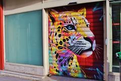 Marko 93_6664 rue Lecourbe Paris 15 (meuh1246) Tags: streetart paris marko93 ruelecourbe paris15 rideaumtallique animaux panthre